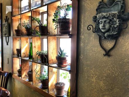 Los Gatos, Cozy spacious space with great lighting and atmosphere. in Los Gatos, CA | Peerspace