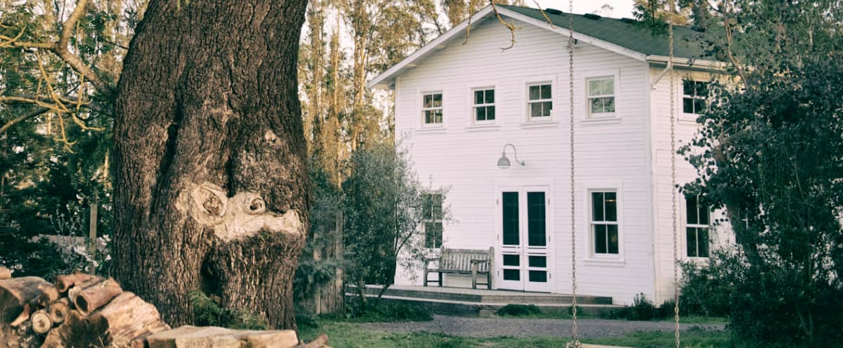 West Sonoma County Farmhouse in Sebastopol Hero Image in undefined, Sebastopol, CA