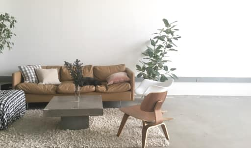 Sun-Filled Interior Design Studio in West Oakland, Oakland, CA | Peerspace