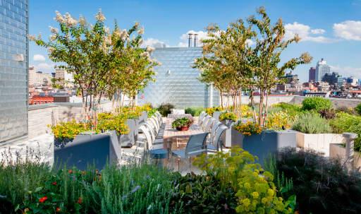 Breathtaking Rooftop Herb Garden -- Stunning City Views in Lower Manhattan, New York, NY | Peerspace