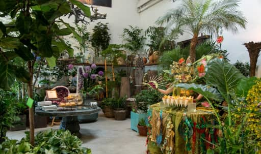 Tropical Urban Conservatory in Bayview, San Francisco, CA | Peerspace