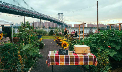 Brooklyn Waterfront Urban Farm in Williamsburg, Brooklyn, NY | Peerspace