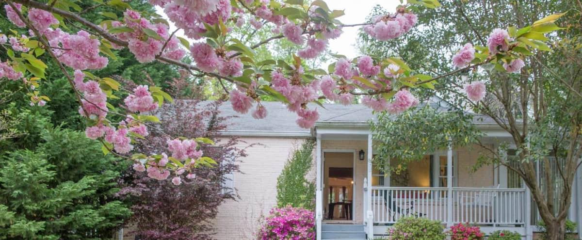 Residential Home for Meetings & Retreats With Large Outdoor Deck in Atlanta Hero Image in Villages of East Lake, Atlanta, GA