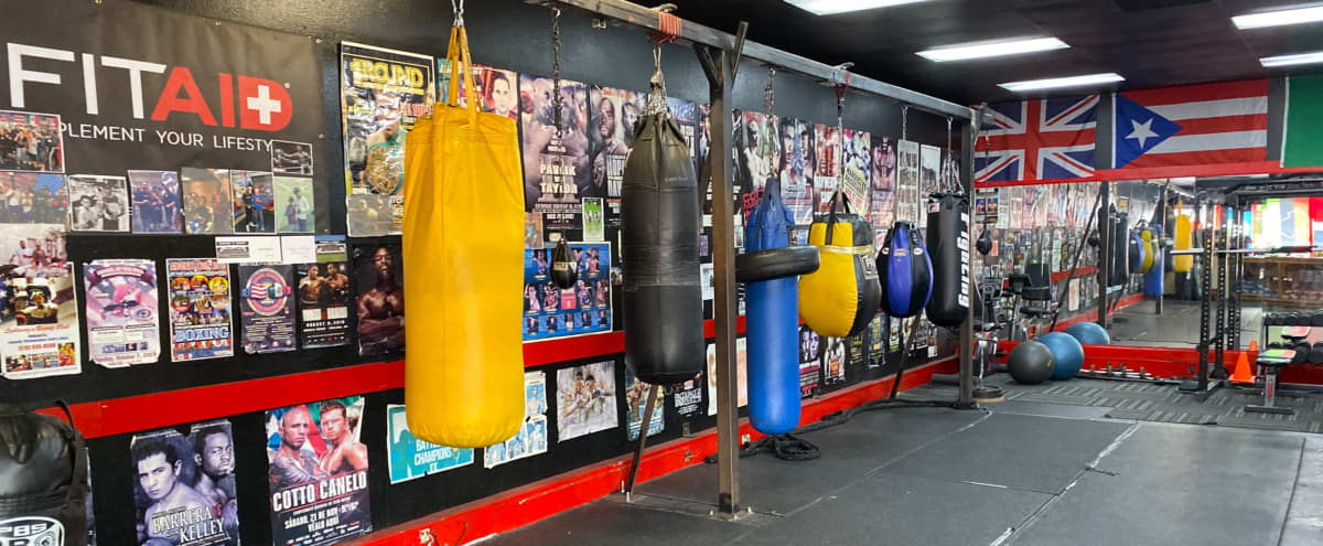 Old School Philadelphia Style Brick Boxing Gym in Oakland Hero Image in Frick, Oakland, CA