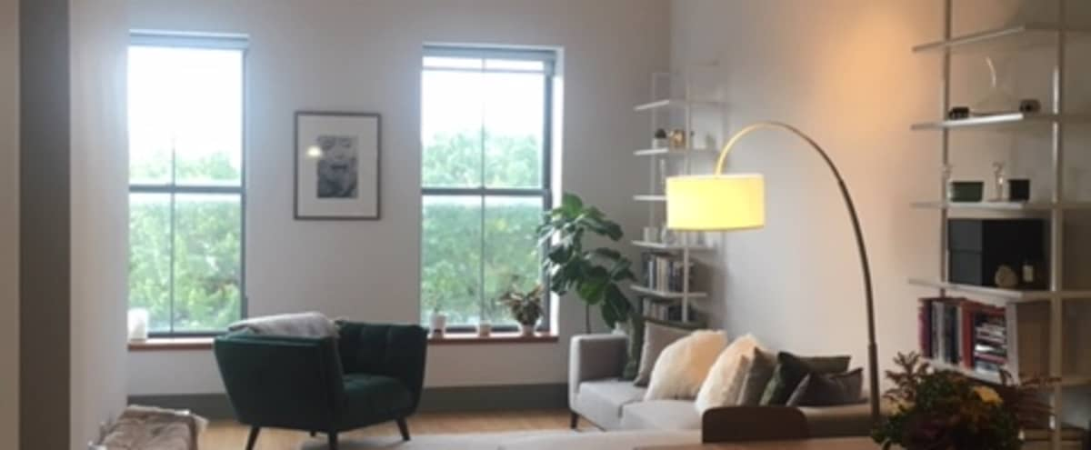 Charming, Biophilic Brooklyn Apartment - Loft Like Ceiling in BROOKLYN Hero Image in Cobble Hill, BROOKLYN, NY