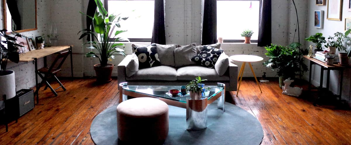 Furnished modern, plant filled, sunny Brooklyn loft in Greenpoint in Brooklyn Hero Image in Greenpoint, Brooklyn, NY