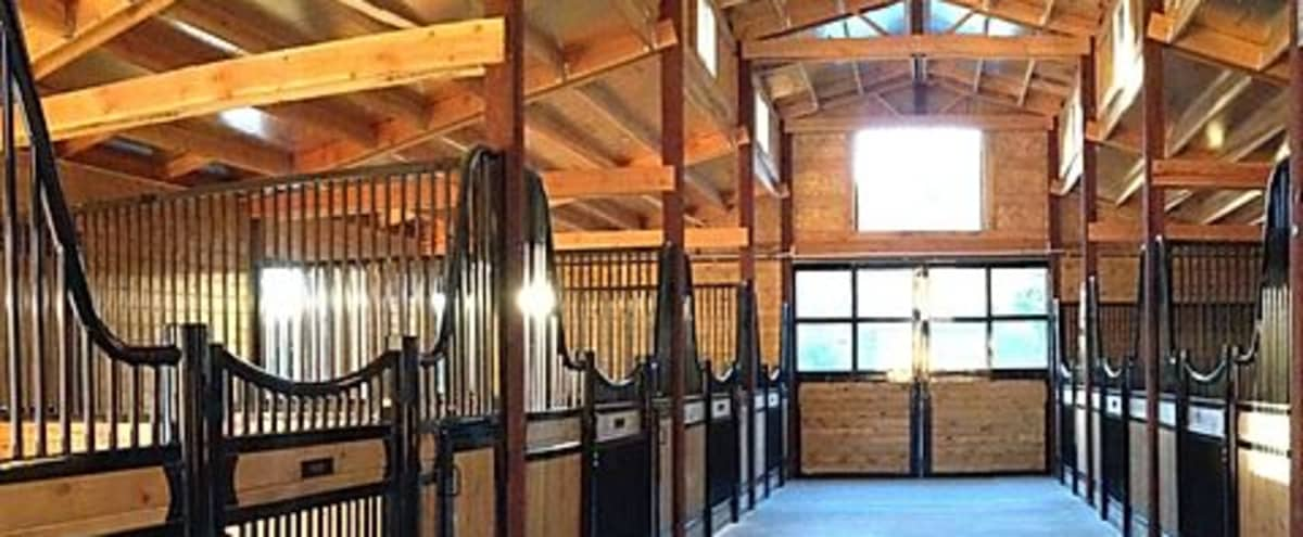 Horse Ranch | Farmhouse perfect for Amazing Photos/Videos! in Lafayette Hero Image in undefined, Lafayette, CA