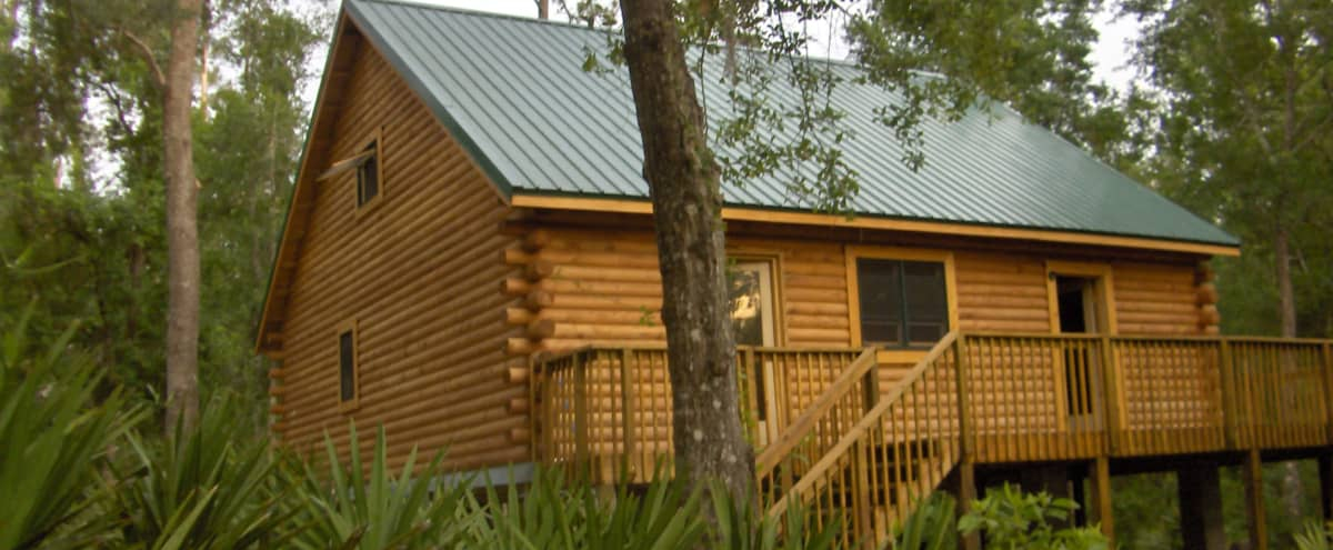 Spacious Log Cabin with Nature View in Orlando Hero Image in undefined, Orlando, FL