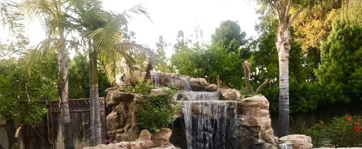 Mini Resort Tropical Oasis in Ventura County in Moorpark Hero Image in undefined, Moorpark, CA