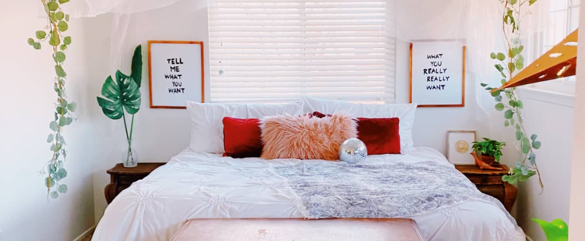 Beautiful Bohemian Bedroom + HOME for Photoshoots | Bohohouse ATX in Austin Hero Image in South Austin, Austin, TX