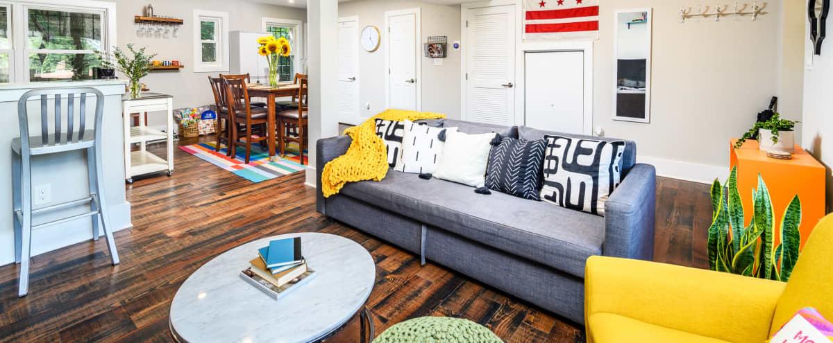 Eclectic Row-Home with Beautiful Decor in Washington Hero Image in Northeast Washington, Washington, DC