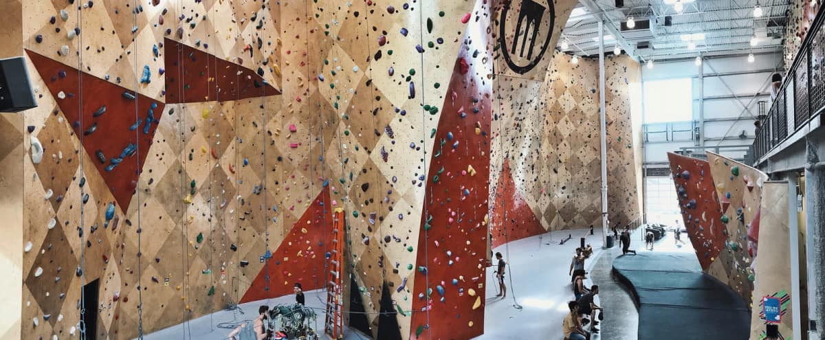 Exciting Rock Climbing & Events Facility Filled With Vibrant Art in Chicago Hero Image in West Loop, Chicago, IL