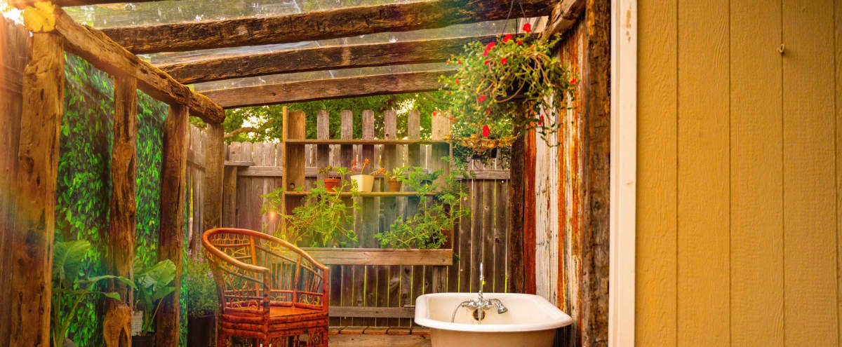 The Rustic Charmed Gardens Greenhouse with Natural Light in North Austin Hero Image in undefined, North Austin, TX