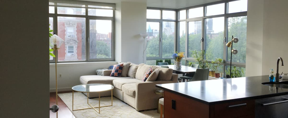 Sun-filled, Spacious Harlem Apartment with Park View in New York Hero Image in East Harlem, New York, NY