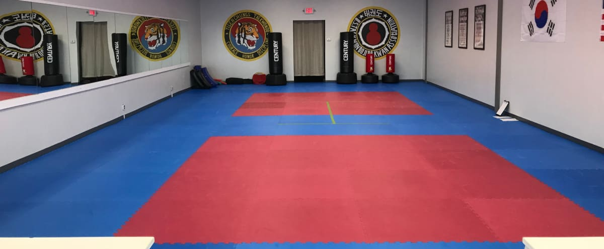 Roomy Martial Arts Studio for Fitness Related Shoots in roseville Hero Image in undefined, roseville, MI