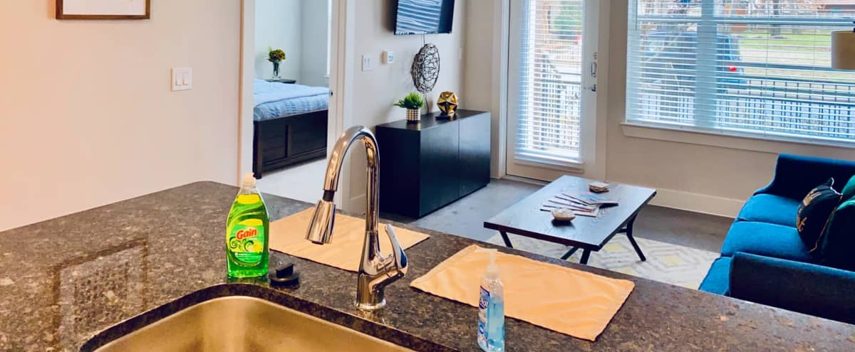 Luxury Downtown Dallas Apt with Extra Amenities & Shooting Space in Dallas Hero Image in Old East Dallas, Dallas, TX
