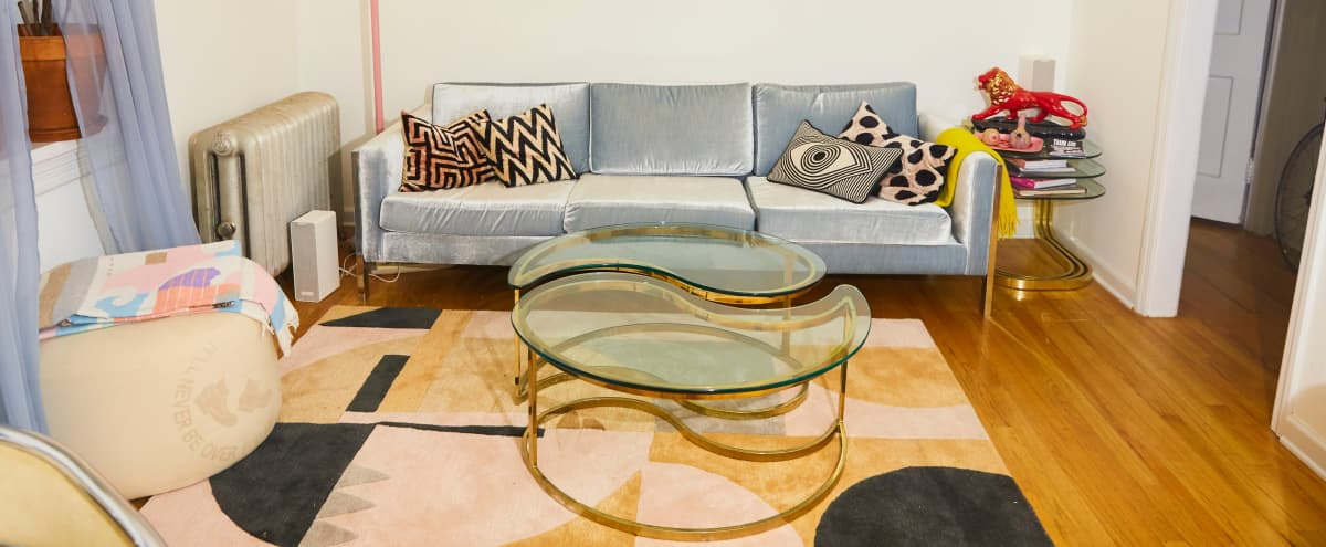 Mid Century Post Modernist Stylized NYC Brooklyn Apartment in Brooklyn Hero Image in Crown Heights, Brooklyn, NY
