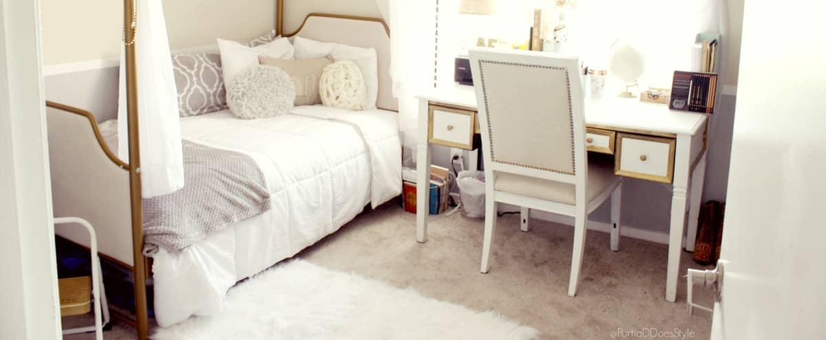 Cozy Bohemian Bedroom with Regal Canopy Bed in Burbank Hero Image in undefined, Burbank, CA