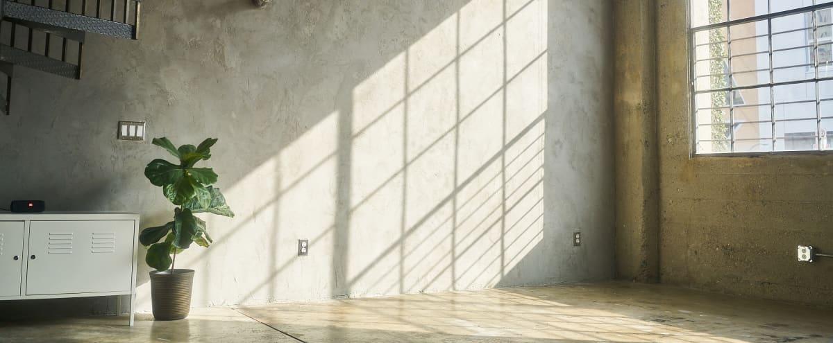 Dayglow Studio (natural light studio/loft) in Los Angeles Hero Image in Rampart Village, Los Angeles, CA
