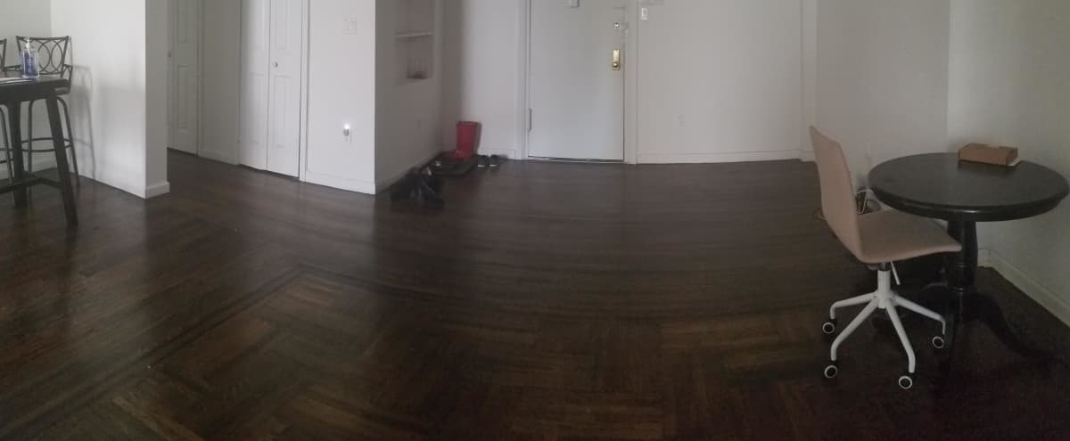 Large Pre-War Unit with Natural Light in Brooklyn Hero Image in Crown Heights, Brooklyn, NY