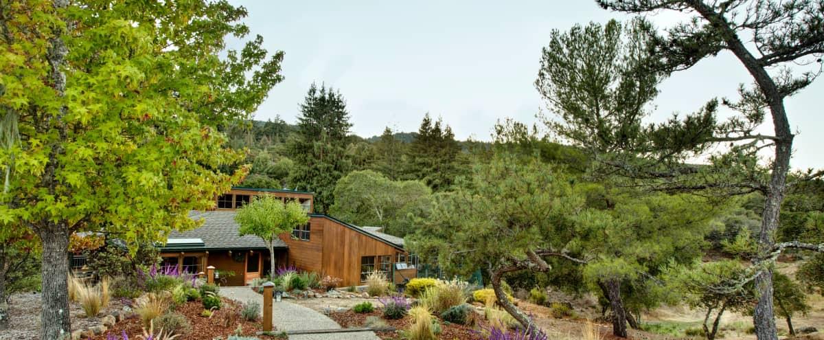 Mountain retreat 5 mins from downtown Redwood City. in Woodside Hero Image in undefined, Woodside, CA