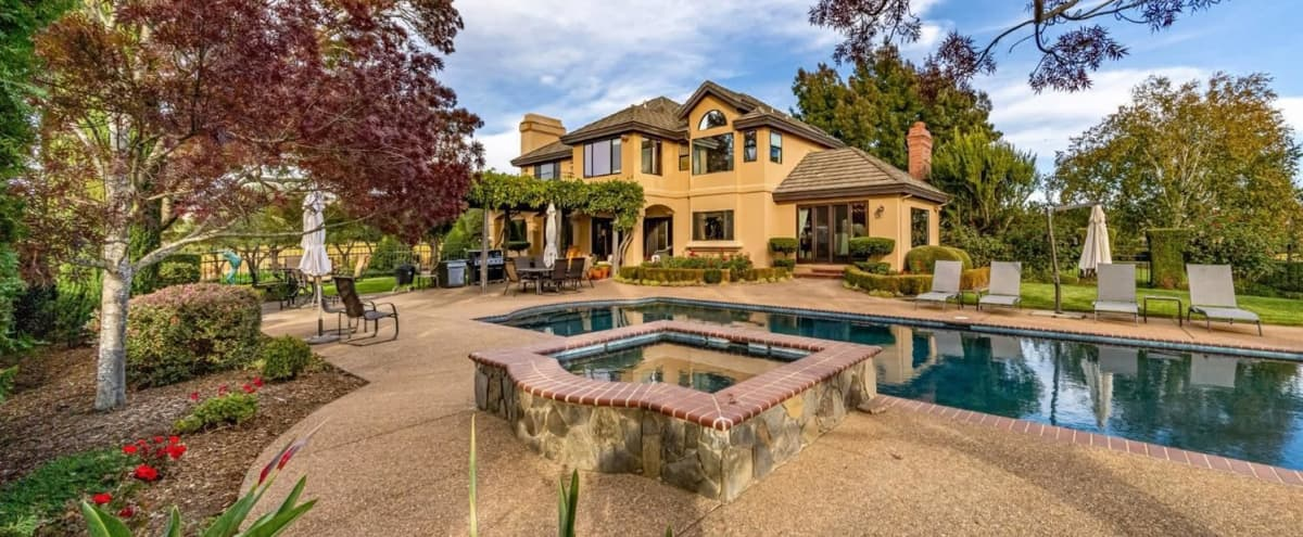 Vineyard Home, Estate & Olive Tree Grove in Healdsburg Hero Image in undefined, Healdsburg, CA