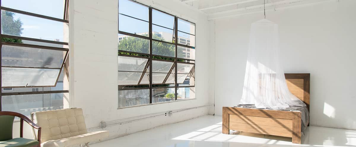 Hill 1 - White Floors Studio with Queen Wooden Bed, Fine Mesh Baldachin & a double-sided rolling Gold & Silver Flat in Los Angeles Hero Image in Downtown, Los Angeles, CA