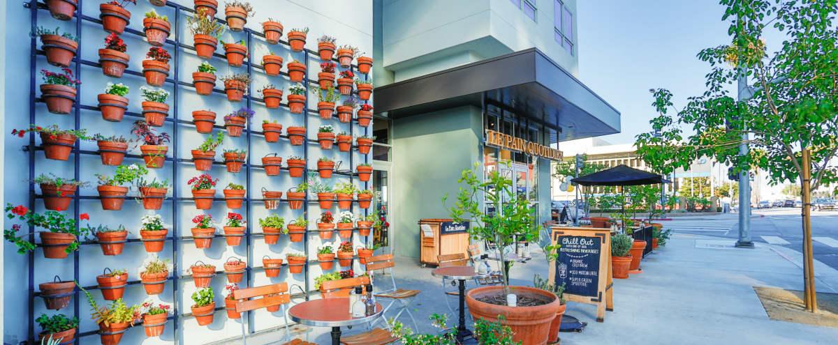 Airy Neighborhood Cafe With Outdoor Patio in Culver City Hero Image in Washington Culver, Culver City, CA