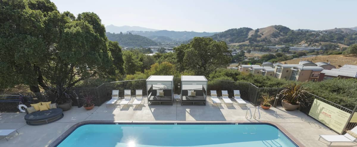 Elegant and Open Event Space with Outdoor Courtyard in San Rafel Hero Image in undefined, San Rafel, CA