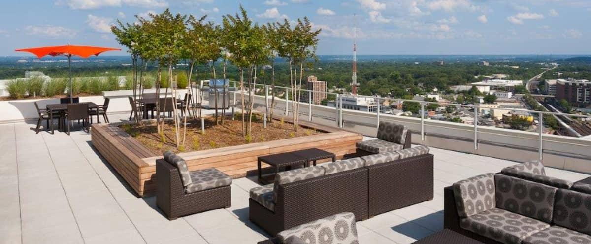 Stunning Rooftop Lounge with Views of the DC Skyline in Silver Spring Hero Image in Downtown Silver Spring, Silver Spring, MD