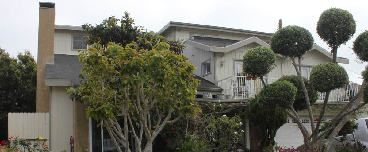 Shabby Chic Home with Beautiful Garden Space in Mar Vista in Los angeles Hero Image in Mar Vista, Los angeles, CA