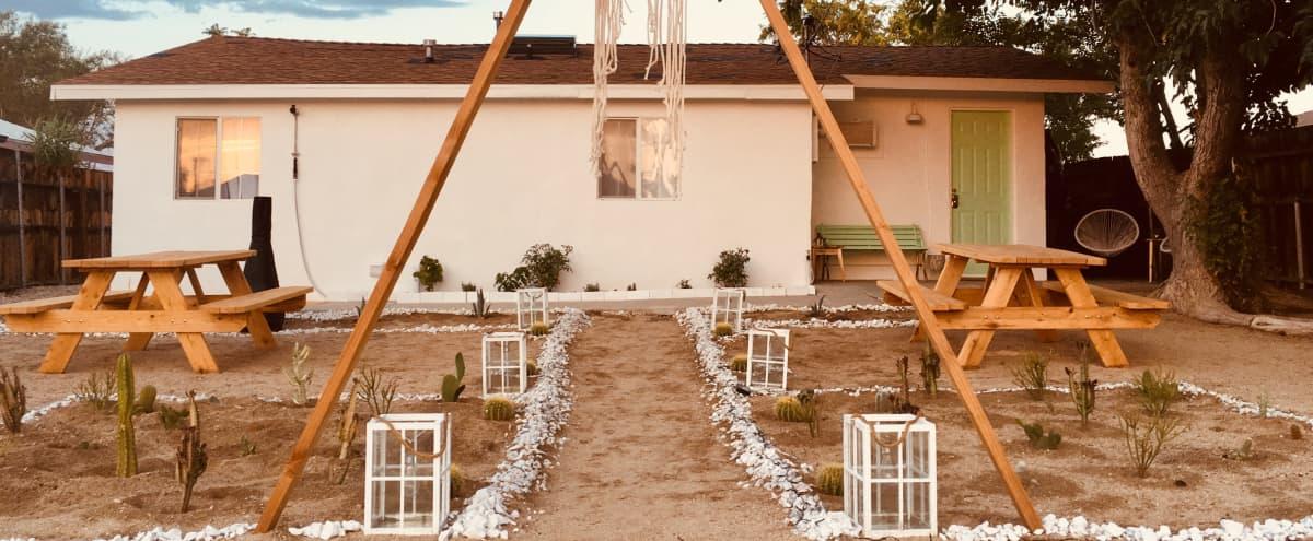 White Cactus House - Bohemian Luxe Desert Bungalow in Joshua Tree Hero Image in undefined, Joshua Tree, CA