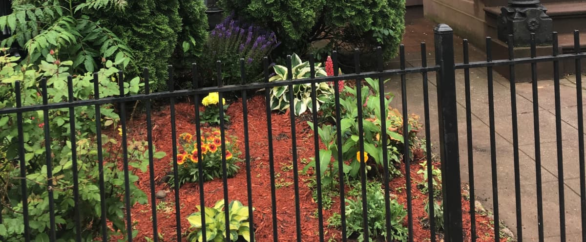 Brooklyn Modern Brownstone with Garden and Deck in Brooklyn Hero Image in Bedford-Stuyvesant, Brooklyn, NY