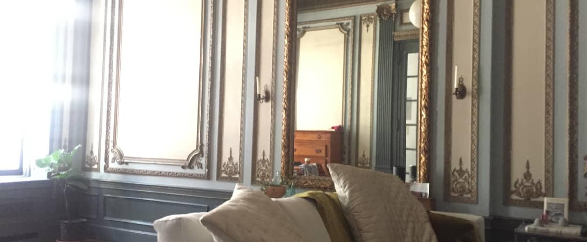 Unique Parisian Chic Parlour Loft Style Apartment In Park Slope Brooklyn Hero Image