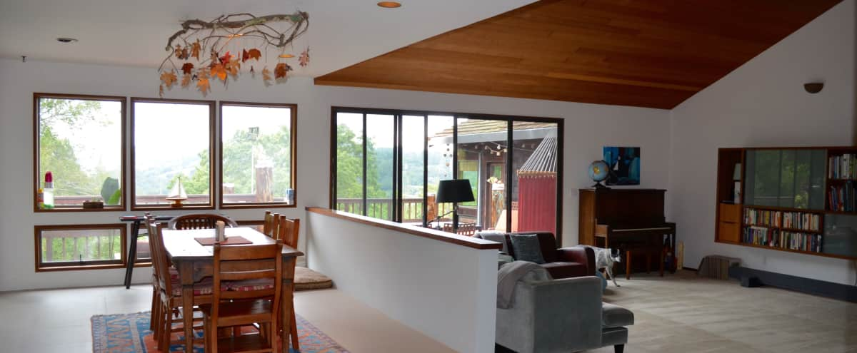Orinda: Spacious, mid-century home in Orinda Hero Image in El Toyonal, Orinda, CA