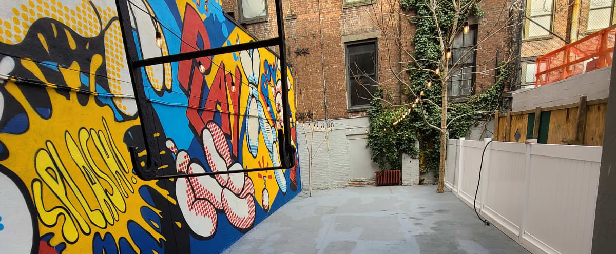 Pop Art Dog Day Care Gym with Big Backyard in New York Hero Image in Lenox Hill, New York, NY