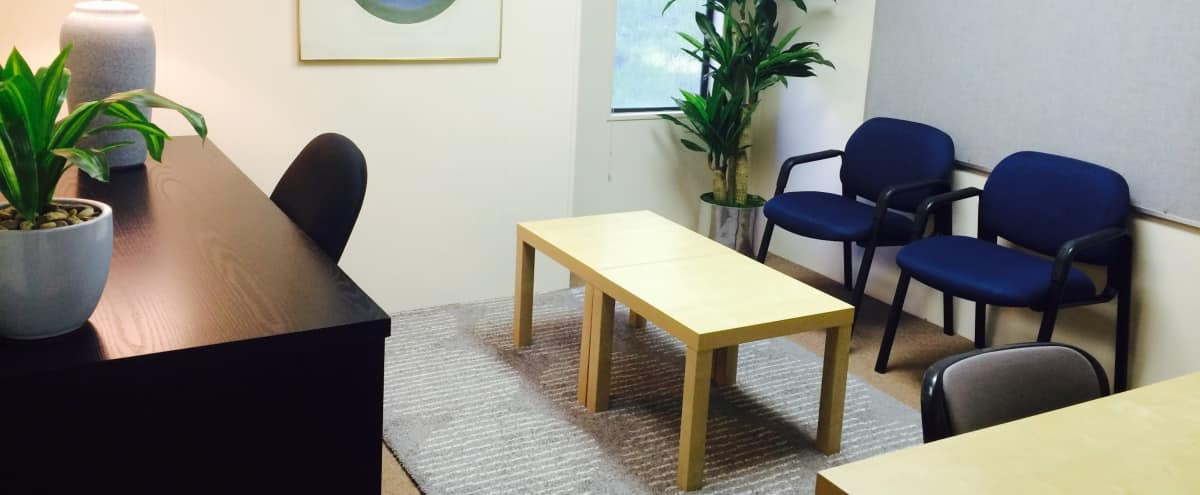 Nonprofit Special! MARINSPACE Furnished Office/Meeting Room in San Rafael Hero Image in undefined, San Rafael, CA
