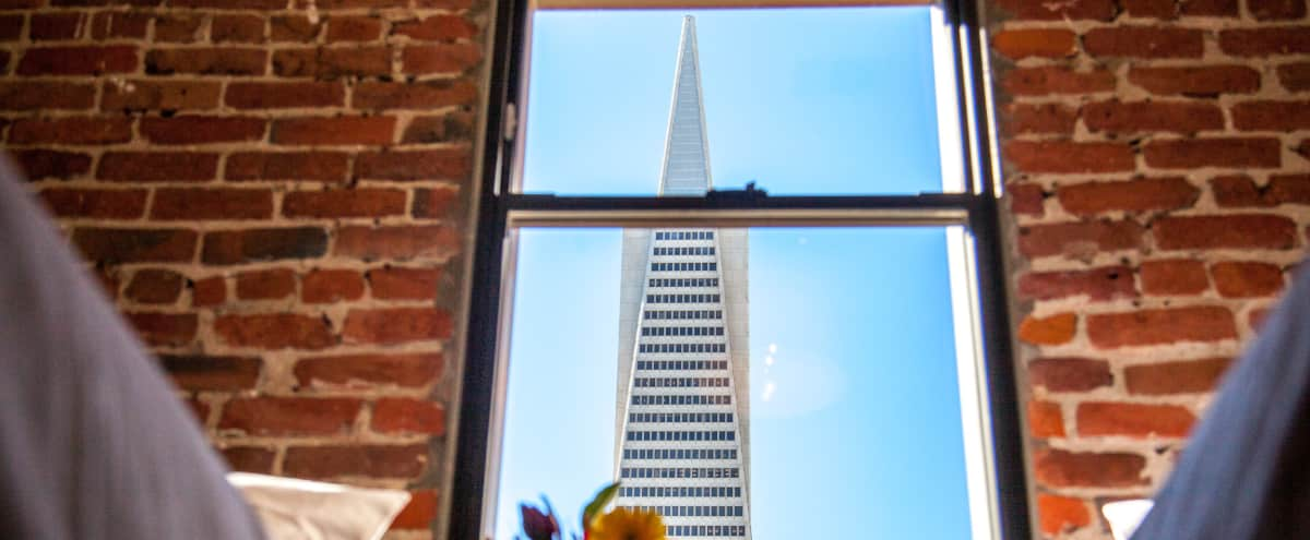 Modern Designer Flat with Iconic Views of Transamerica Pyramid in San Francisco Hero Image in Financial District, San Francisco, CA