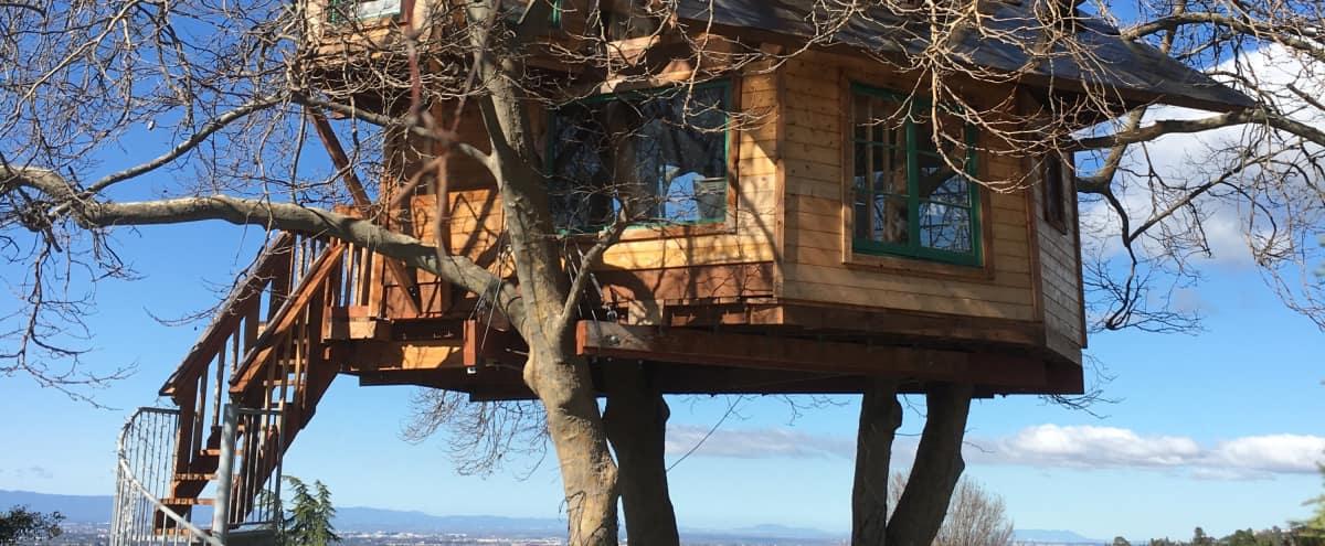 Treehouse Of Your Dreams! in San jose Hero Image in Alum Rock, San jose, CA