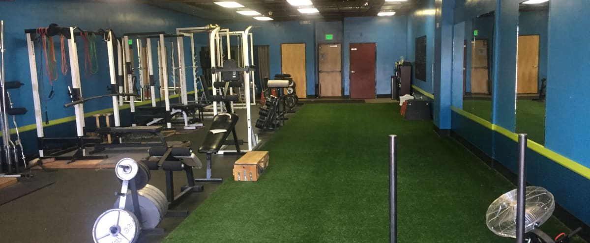 Professional Gym in West Westminster in Westminster Hero Image in West Westminster, Westminster, CO
