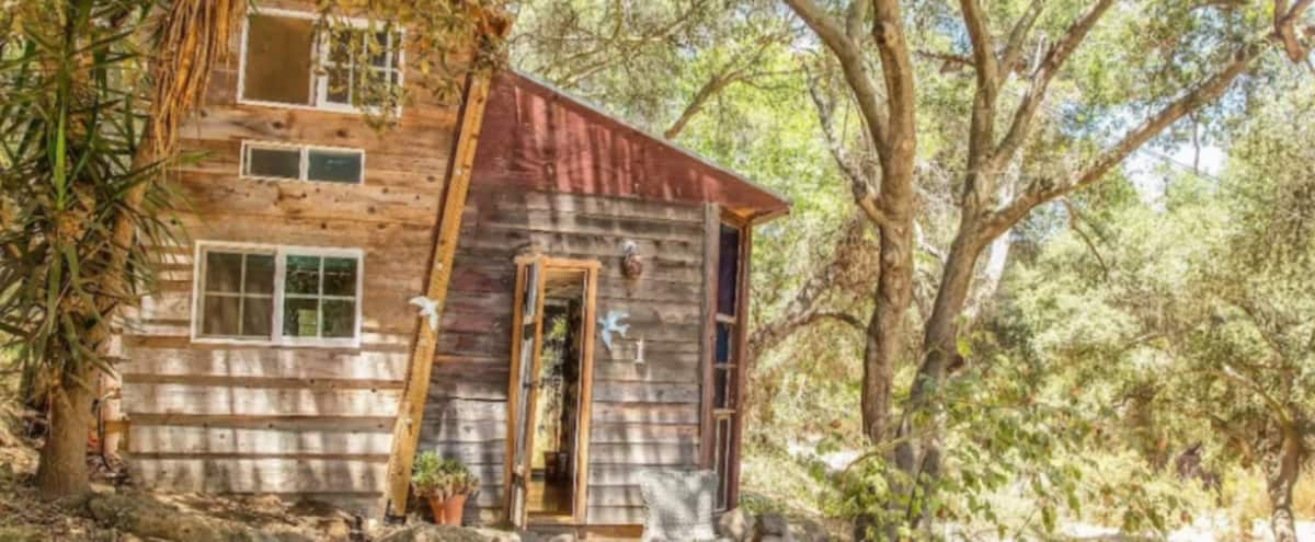 Incredible 13 acre ranch with a dozen artistic rustic cottages surrounded by nature in Topanga Hero Image in undefined, Topanga, CA