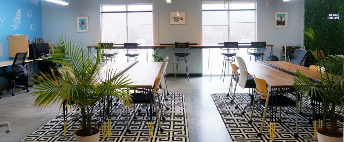 Howdy Room - Creative, Colorful Workspace Lounge with Natural Lighting in Austin Hero Image in East Austin, Austin, TX