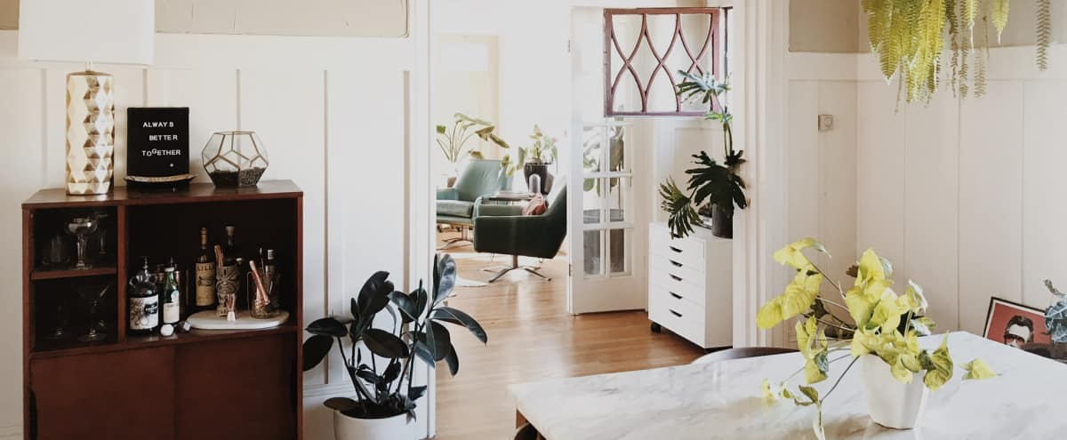 Plant Filled Mid Century Modern Flat in Oakland Hero Image in Hoover - Foster, Oakland, CA