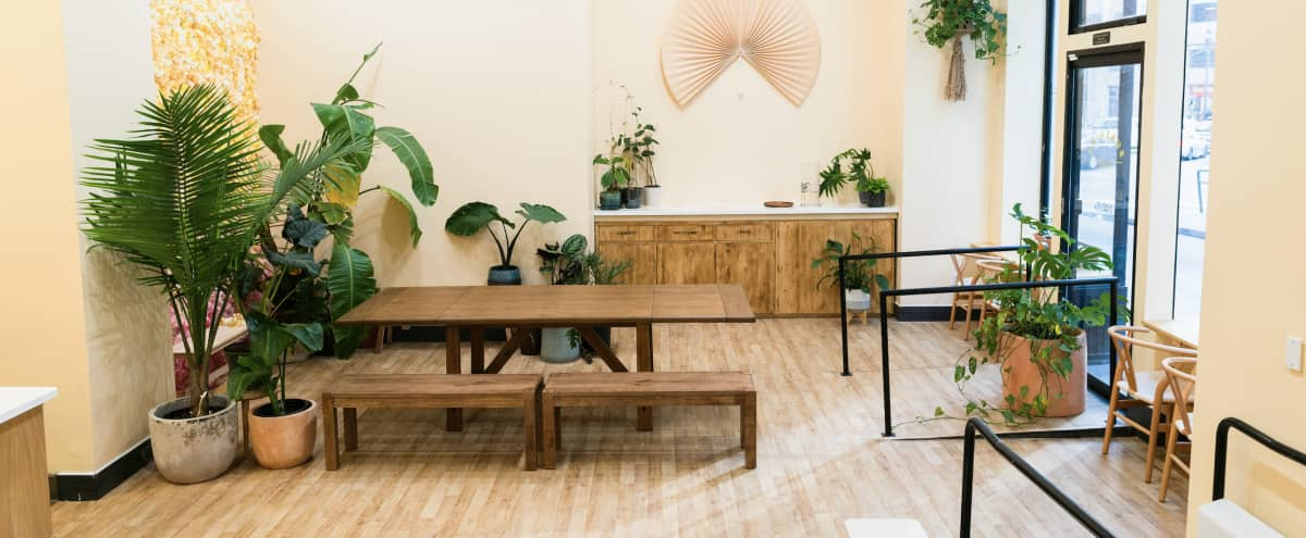 Stylized Bright, Airy Cafe Located in FiDi Perfect for a Variety of Events in San Francisco Hero Image in Financial District, San Francisco, CA