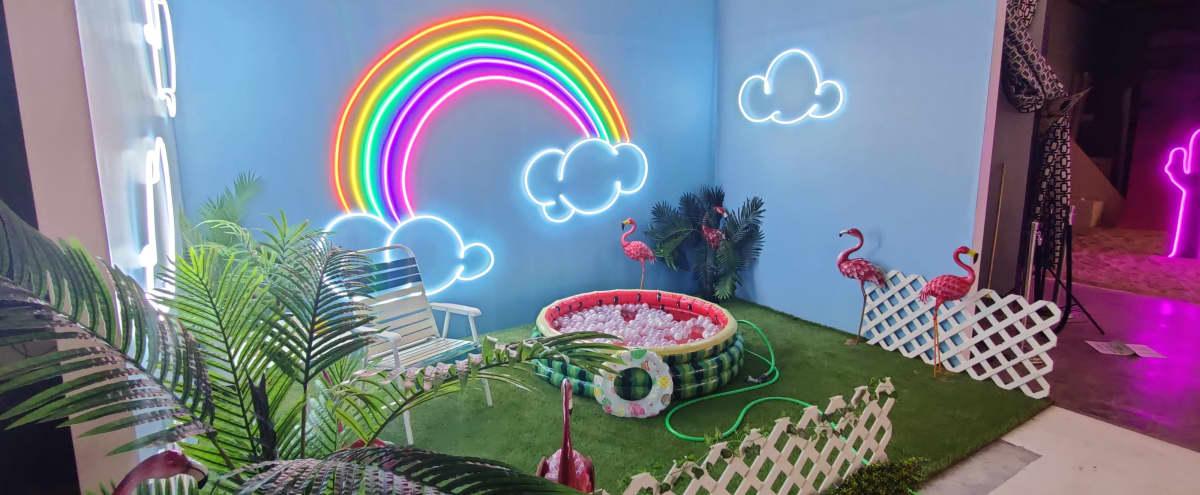 Neon Themed Studio in DALLAS Hero Image in Cedar Crest, DALLAS, TX