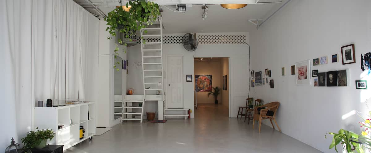 Stunning retail-level art gallery in Williamsburg in Brooklyn Hero Image in Williamsburg, Brooklyn, NY