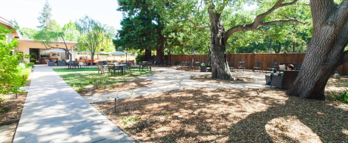Outdoor Event Space Patio + Lawn in Menlo Park Hero Image in Linfield Oaks, Menlo Park, CA