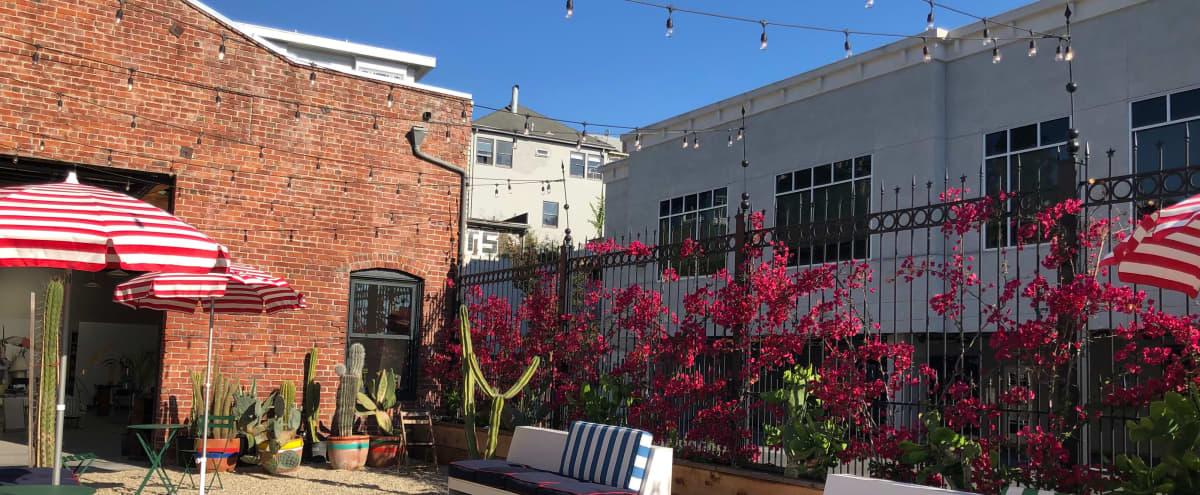 Urban Courtyard with Cactus Garden in Oakland Hero Image in Piedmont Avenue, Oakland, CA