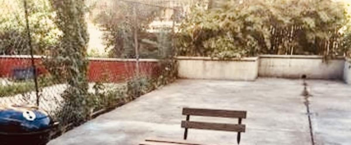 LARGE backyard/ outdoor space in Brooklyn Hero Image in Bedford-Stuyvesant, Brooklyn, NY