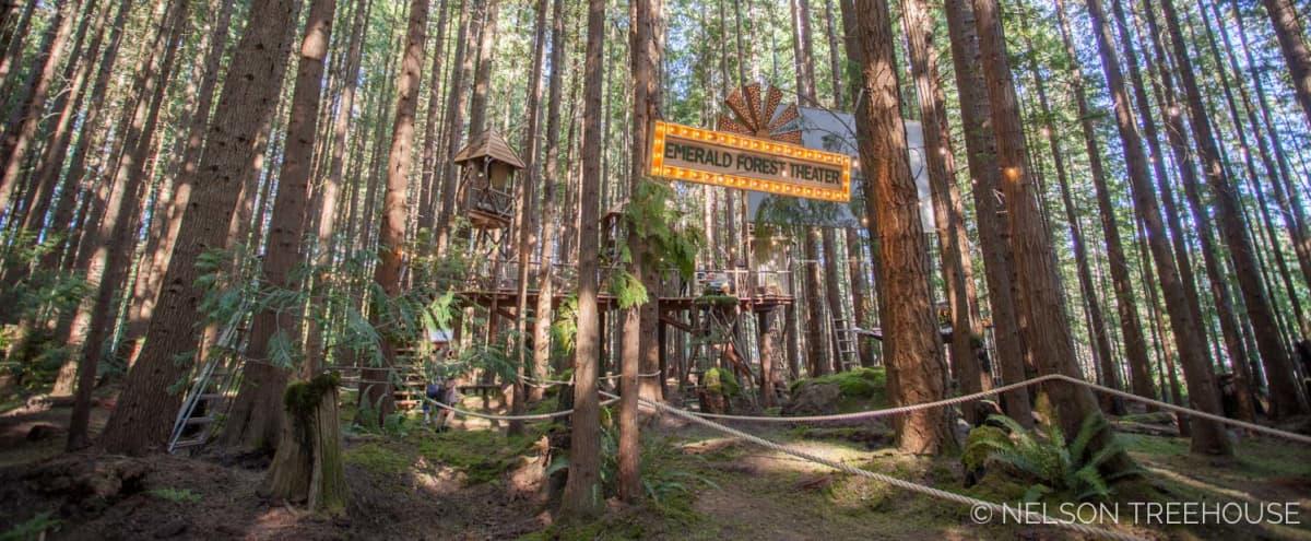 Film & Photo Location in Stunning Redmond Forest with Climb-In Theater in Redmond Hero Image in undefined, Redmond, WA